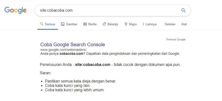 5 alasan mengapa website tidak muncul di Google